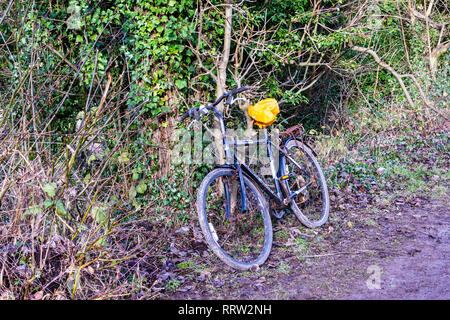 A pushbike with the saddle covered by a carrier bag resting againt an untidy hedge alongside a towpath - Stock Image