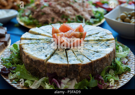 Aged blue cheese wheel with wedge, cut in small triangles at a buffet restaurant, a very distinctive flavor dairy, served as tapas or appetizer - Stock Image