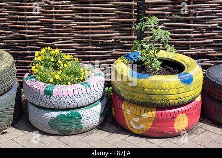 Colourfull tyres used as planters for plants and vegetables - Stock Image