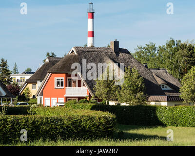 Typical house at the Baltic Sea, reed covered roof, lighthouse tower in the background, Zingst, peninsula of Fischland - Stock Image