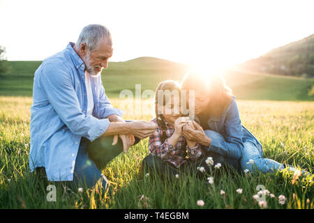 A senior couple with granddaughter outside in spring nature at sunset. - Stock Image