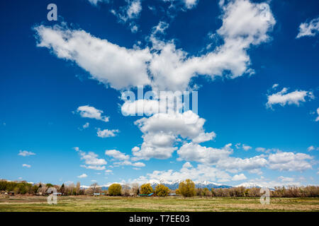 Beautiful blue sky with cumulus clouds; snow capped Rocky Mountains on horizon; Vandaveer Ranch; Salida; Colorado; USA - Stock Image