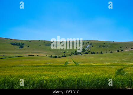 The ancient hill figure of the Long Man of Wilmington. Previously dated to the 18th century it is now thought to be Roman or before. - Stock Image