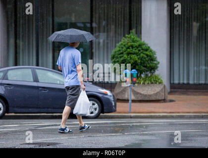 Man walking alone on a rainy day holding an umbrella and grocery bag - USA - Stock Image