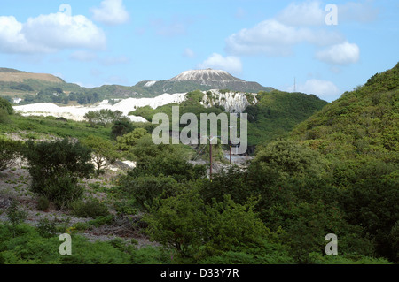China clay spoil heaps, recolonisation on old ones, St Austell Cornwall UK - Stock Image