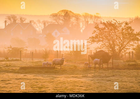 Arundel West Sussex, Friday 20th April 2018. UK Weather, A misty start to the day in Arundel on what is set to be another scorching april day with temperatures going in the mid twenties. © Photovision Images News / Alamy Live news. - Stock Image