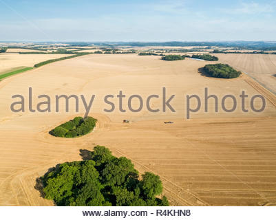 Harvest aerial landscape of combine harvester cutting summer wheat field crop with tractor trailer under blue sky on farm - Stock Image