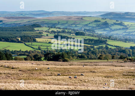 Brecon Beacons National Park Brecon Powys Wales on a misty morning - Stock Image