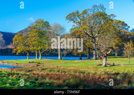 Darwent Water, Keswick, Lake District National Park, Cumbria, England, UK, Europe. - Stock Image