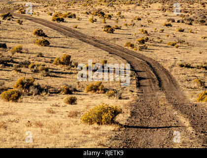 Overview of dirt road in hIgh desert in Nevada, USA, featuring plenty of copy space - Stock Image