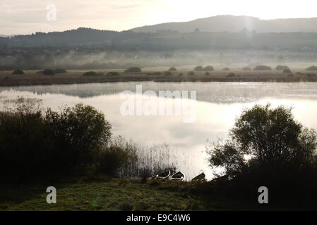 Boats Silence silent morning scenery with fog and mist at Lac de Remoray near Lac de Saint Point, Pontarlier, France - Stock Image