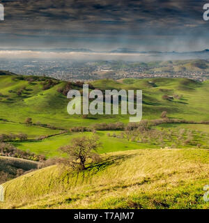 The Lagoon Valley Park in Vacaville, California, USA, from a hill, featuring green grass and the city of Vacaville in the background on a partly cloud - Stock Image