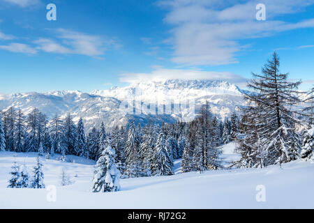 Verschneite Winterlandschaft, hinten der Hochkönig, Skiregion Alpendorf, St. Johann im Pongau, Salzburger Skiwelt Amadé, Salzburger Land, Österreich - Stock Image