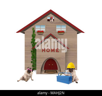 cute average working class pug dog familiy, sitting down in front of their renovated home, isolated on white background - Stock Image
