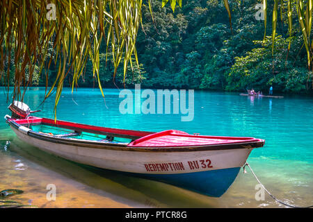 Travel arond jamaica , nature and local life and landscape - Stock Image