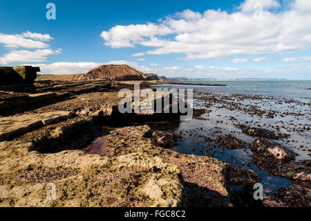A view of Filey Brigg at low tide, from the end of the Brigg looking back towards the coast. Filey, North Yorkshire. - Stock Image