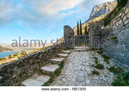 A stray orange cat stands among the ruins of the Castle Of San Giovanni with the bay of Kotor in view in the distance on the Coast of Montenegro - Stock Image