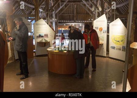 Inside museum barn building at Avebury, Wiltshire, England, UK - Stock Image