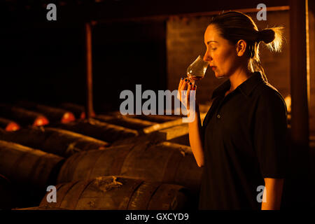 Female taster smelling whisky in glass at whisky distillery - Stock Image