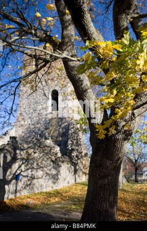sankt pers church ruin - Stock Image