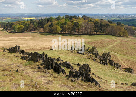 Outcrops of reputedly the oldest (precambrian) rocks in Britain, Bradgate Park, Leicestershire, England, UK - Stock Image