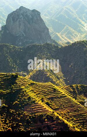 Island of La Gomera, Canary Islands. Roque Cano, a volcanic plug, rises above cultivation terraces of Tamargada - Stock Image