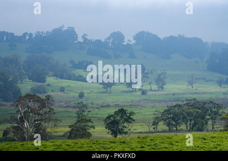 Farmland in the Southern Highlands, New South Wales, Australia - Stock Image