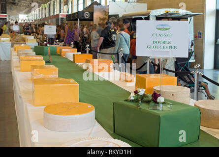 Double Gloucester cheeses in the Food Hall at the Great Yorkshire Show. - Stock Image