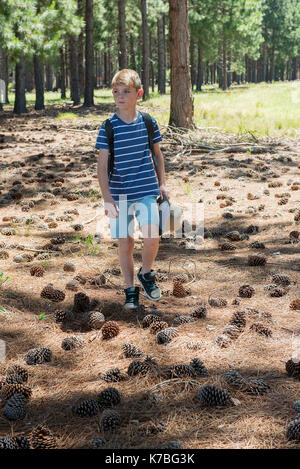 Boy walking in woods - Stock Image