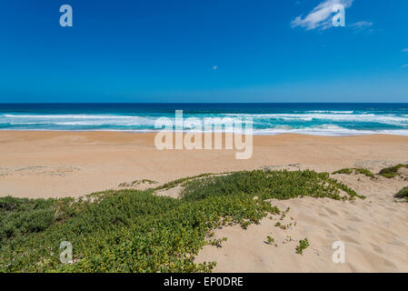 Beach at Garden Route, South Africa - Stock Image