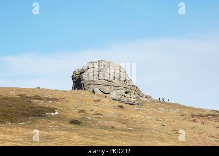 Tourist group climbing Haytor on Dartmoor - Stock Image