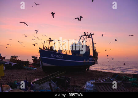 Hastings, East Sussex, UK. 23rd February 2019. Seagulls swirl round Hastings fishing boat at a misty sunrise on the Old Town Stade fishing boat beach. - Stock Image