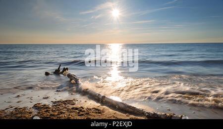 Summer, Sun, Golden Hour, Beach, Baltic Sea, Mecklenburg, Germany, Europe - Stock Image