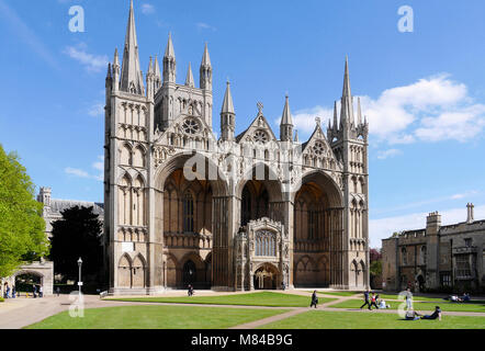 Peterborough Cathedral, Cambridgeshire, England, UK - Stock Image