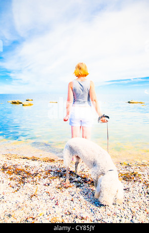 Woman with bedlington terrier on a beach on Gotland, Sweden. - Stock Image