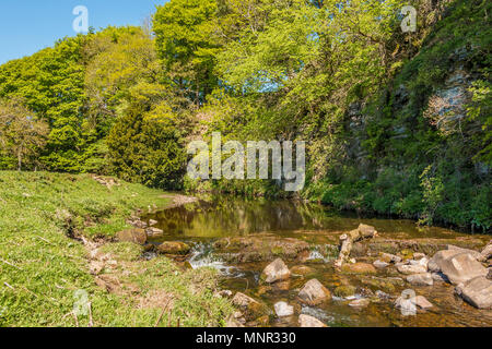 North Pennines landscape, a tranquil scene in spring sunshine on the upper reaches of the River Greta near Bowes, Teesdale, UK - Stock Image