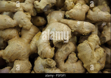 Food background - Zingiber officinale or commonly know as ginger - Stock Image