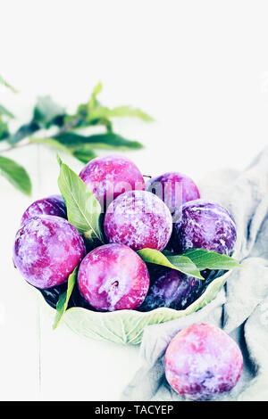 Bowl of freshly picked organic plums with leaves. Image shot from high angle view with room for text. - Stock Image