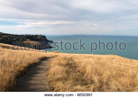 View to Taylors Mistake beach from Godley Head Walkway, Canterbury, New Zealand - Stock Image