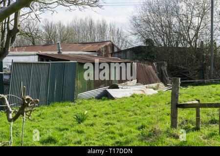 Corrugated iron farm buildings Milton Cambridge 2019 - Stock Image