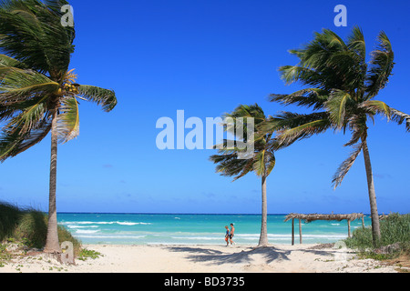 Cuba Cayo Coco Couple walking on beach beneath palms Copyright Christopher P Baker - Stock Image