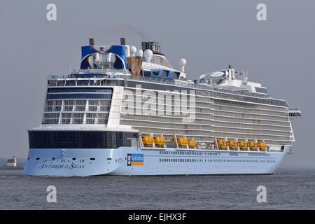 Anthem of the Seas passing Stade bound for Hamburg - Stock Image