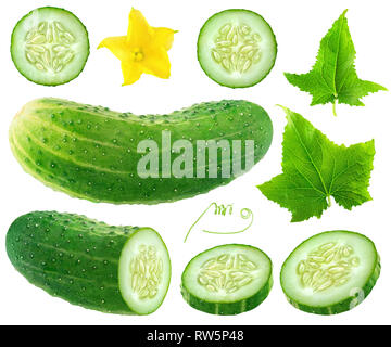 Isolated cucumber collection. Whole and cut cucumber, flower and leaves isolated on white background with clipping path - Stock Image