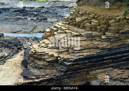 Old Red Sandstone horizontal cleaved rock strata. Orkney Mainland north coast near Birsay. Middle Devonian period - Stock Image