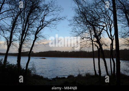 A view sandwiched between tree silhouettes looking at an Island across Lough Erne in Co Fermanagh, N. Ireland - Stock Image