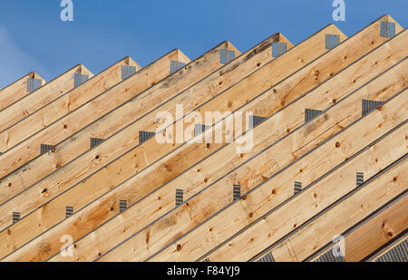 Row of Timber roof trusses in a line on a modern roof construction of a new build warehouse. - Stock Image