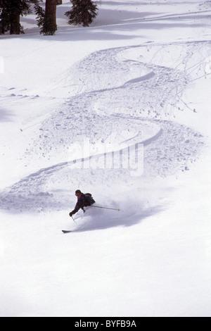 Telemark snow skier in deep powder at Mammoth Lakes, California, USA - Stock Image