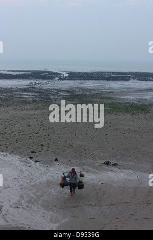 An oyster farmer walks in from the oyster beds during low tide. Jincheng, Kinmen County, Taiwan - Stock Image