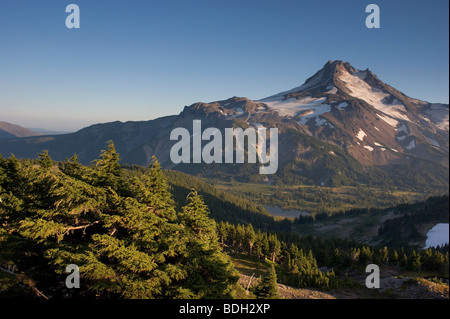 Mount Jefferson from Park Butte - Stock Image
