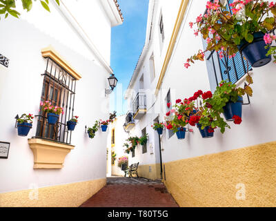 Estepona old town with white washed buildings and traditional potted geraniums, typical floral rustic quiet pedestrian pathway Estepona, Málaga Spain - Stock Image